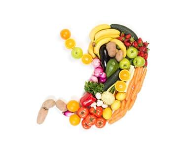 Veganer Ernährungsberater werden