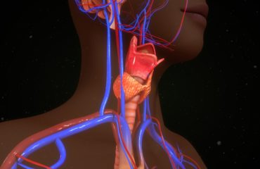Hashimoto-Thyreoiditis - Ernährung bei Hashimoto