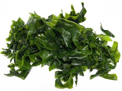 Algen - Omega-3-Fettsäuren-Quellen reich an DHA und EPA