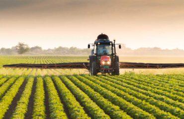 Endokrine Disruptoren -Pestizide in unseren Lebensmitteln