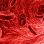 vitamin B12 nebenwirkungen