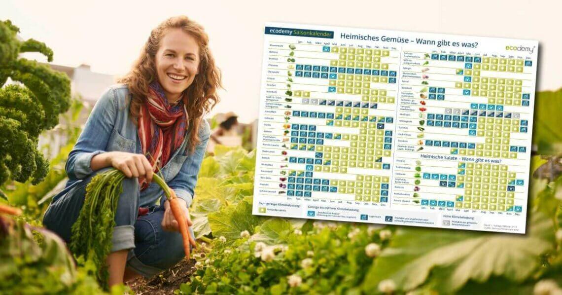 ecodemy Saisonkalender - Obst, Gemüse und Salat